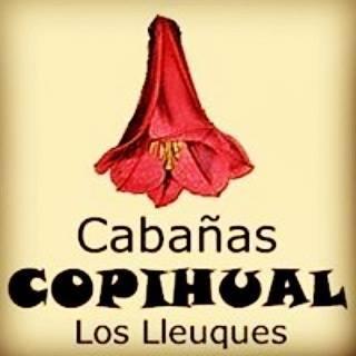 Cabañas Copihual