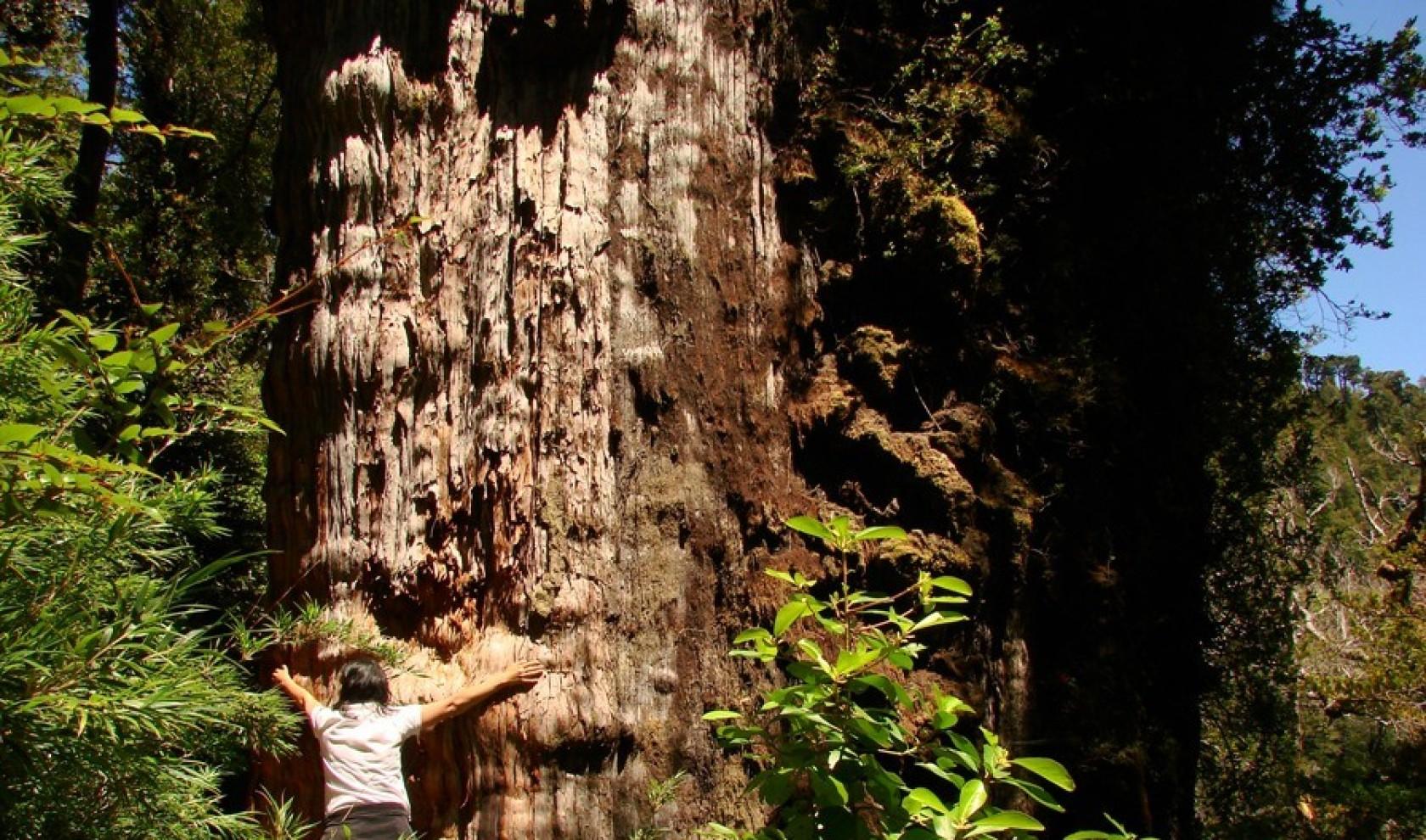 Eco Ranco Expediciones